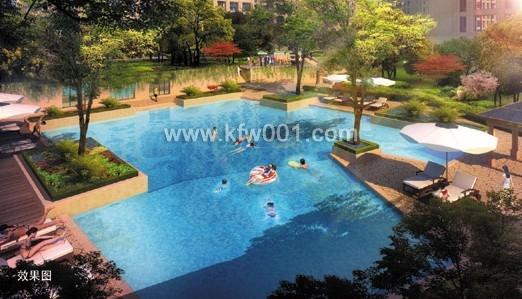 景观游泳池效果